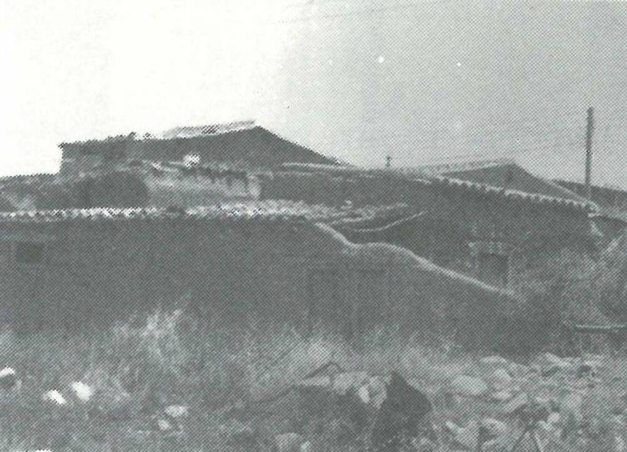 orounta1990_14